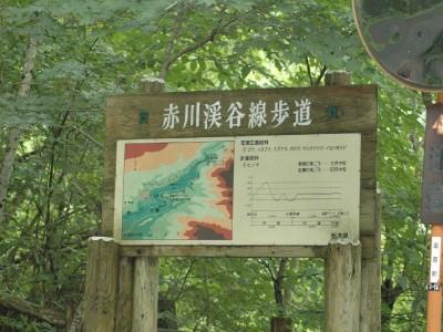 Ta01090728s01shizenokushiobara07700