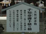 Ta01091204d04ohyamazumijinjya11002