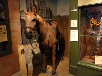 Ta100309123203019nzcanterburymuseum