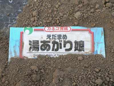 Ha0011052117430513okanohatake202701