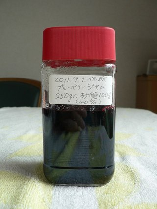 Ha1111090112530921blueberryjam01