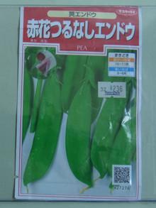 Ha1012042912080421endoushirobana02