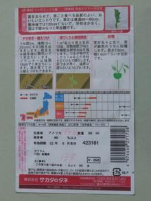 Ha1212042912100419endoushirobana02