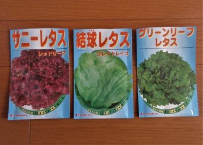 Lettuce201910091img_1144